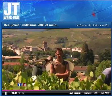 Vendanges 2009 sur TF1